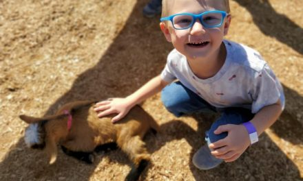 Cross-E ranch mixes farming and fun
