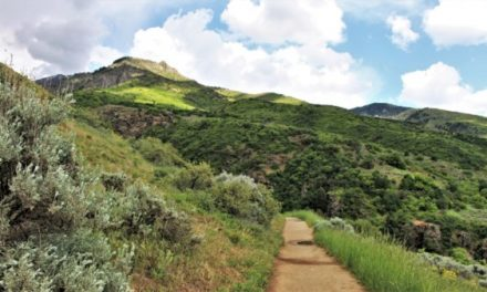 Davis County's Top 10 Hiking Trails